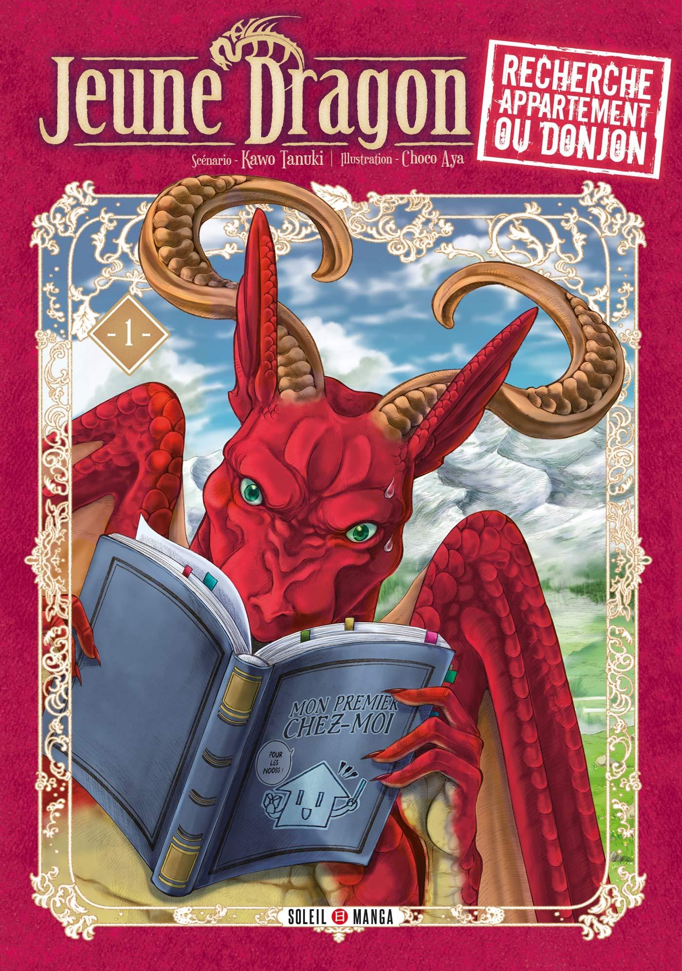 Jeune dragon recherche appartement ou donjon tome 1